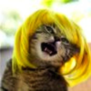 im_a_blonde_t1