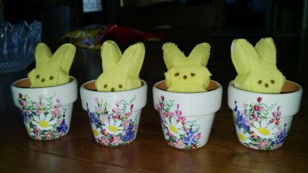2013-03-bunny